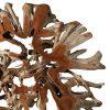 Διακοσμητική ρίζα από τικ ξύλο,Root by teakwood